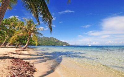 WHAT'S HOT (OR WHAT'S COOL) IN FRENCH POLYNESIA?