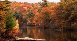 New England Fall Foliage Yacht Charter
